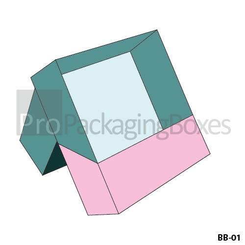 Custom Printed Book Packaging Boxes-01