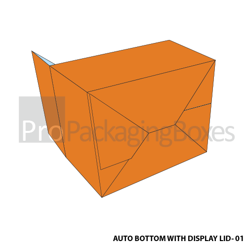 Auto Bottom Boxes with Display Lid