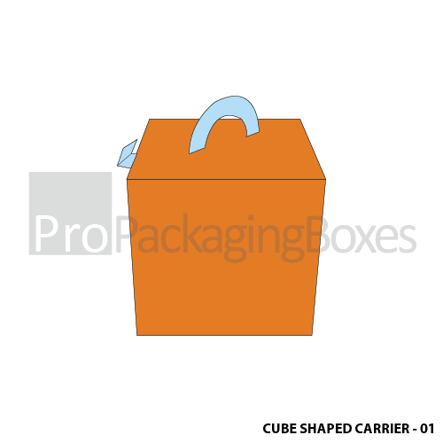 Custom Printed Cubed Shaped Carrier Boxes