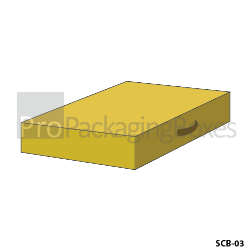 Custom Packaging Boxes in Suitcase Shape Suppliers