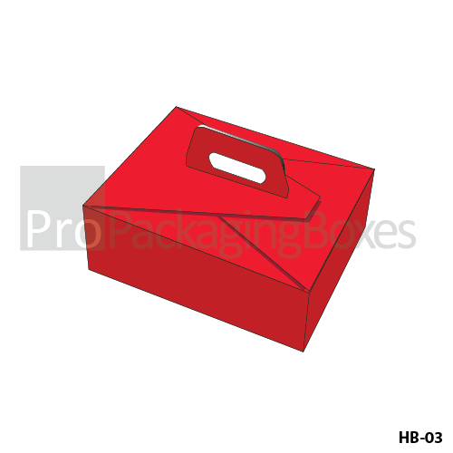 Customized Packaging Boxes with Handle