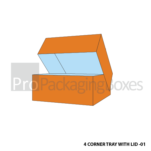 Custom Printed Four Corner Packaging Tray with Lid Front View