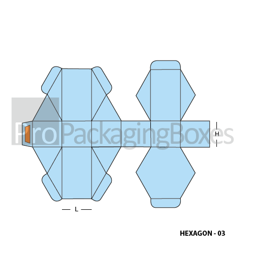 Custom Hexagon Boxes-Template