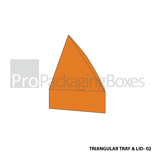 Customized Triangular Tray with Lid Boxes - Side View