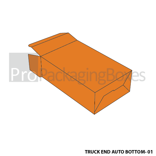 Personalized Tuck End Auto Bottom Boxes